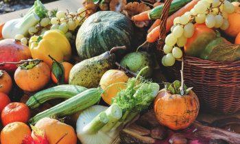 Nyt studie viser at man bør indtage mindst 800 gram grøntsager om dagen