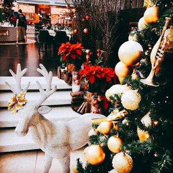 Har du styr på julemiddagen?